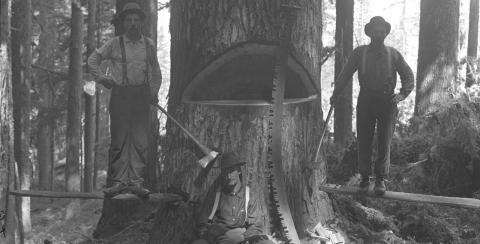 Tømmerhuggere